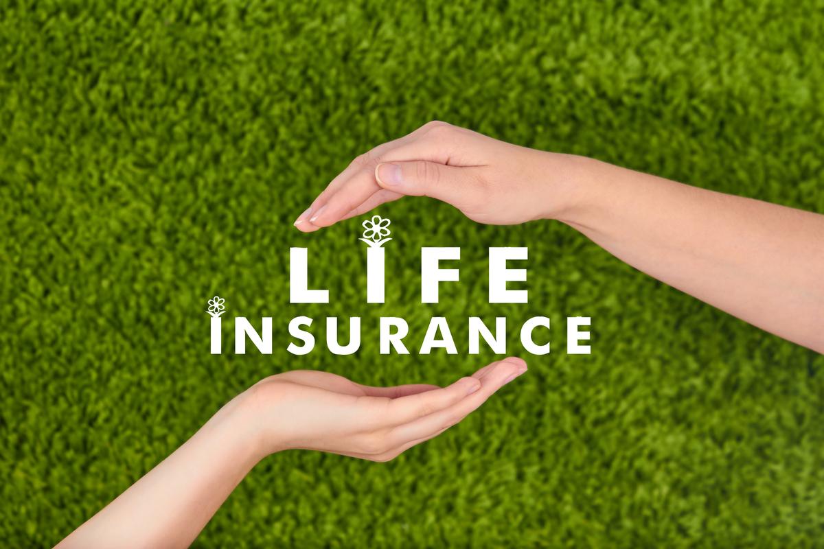 加入している保険について確認したいんだけど、どうしたらいい?
